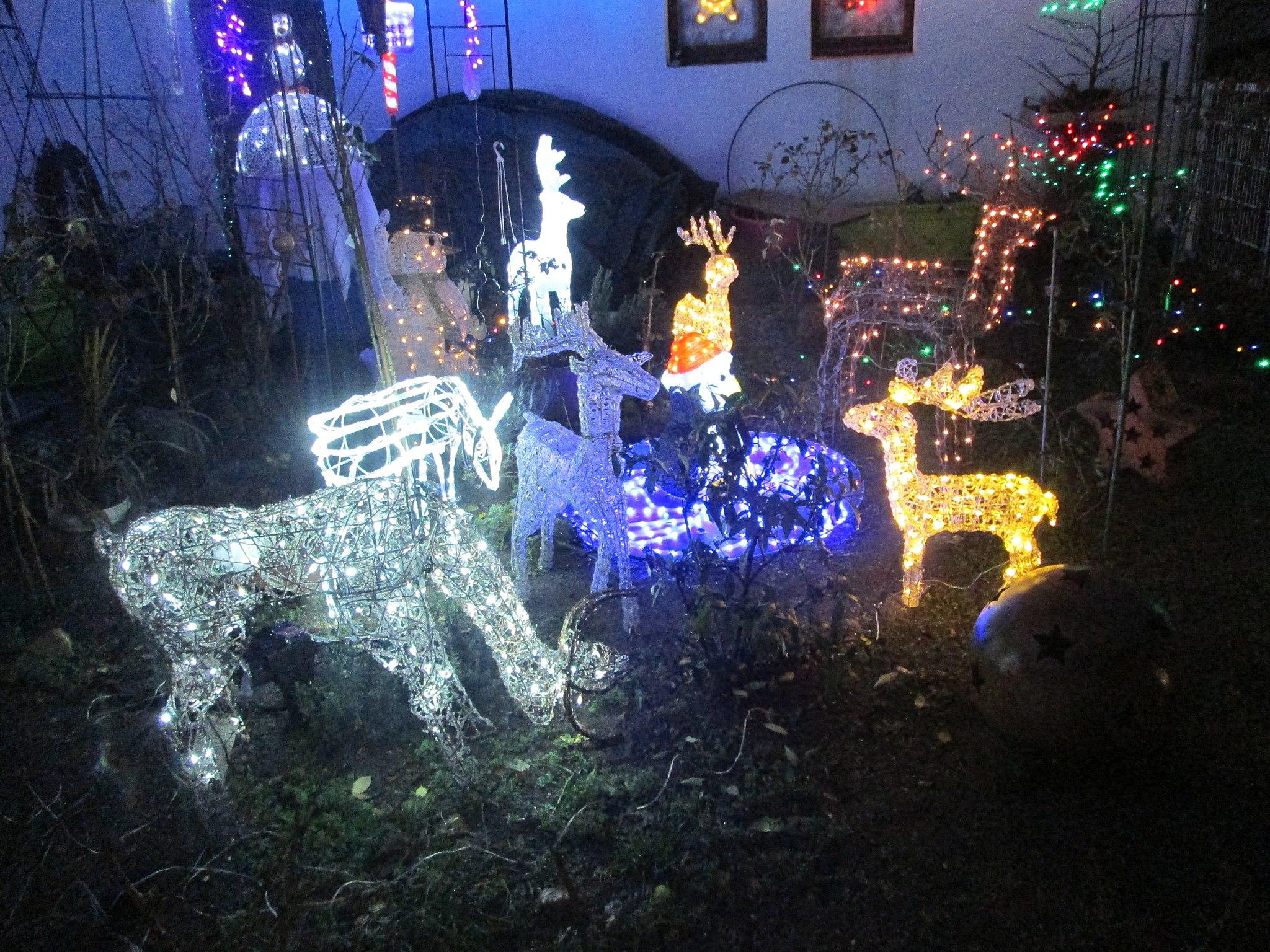 Weihnachtsbeleuchtung